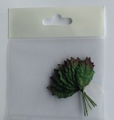 25 mm green rose leave pack 10