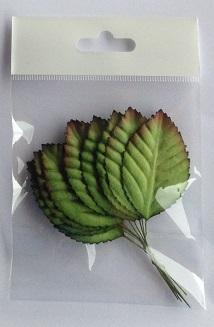 50 mm grean leaf dark edge pack 10