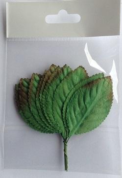 55mm green leave tan edge pack 10