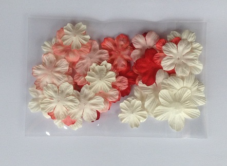 reds and whites mix pack of 40