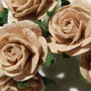 beige 15mm roses