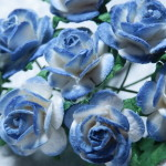 midnight blue and White 15mm roses
