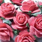 Peach 15mm roses
