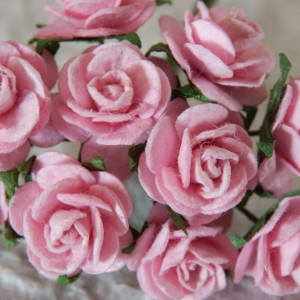 Baby Pink 15 mm roses