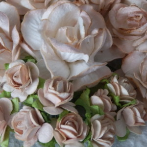 Beige Mixed Paper Roses
