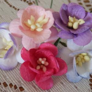 mixed blossoms