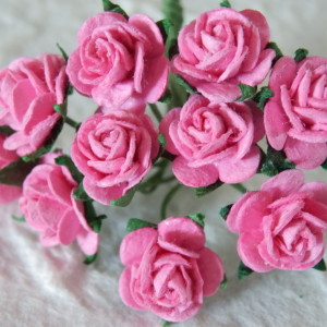 Strawberry Pink 15mm Roses